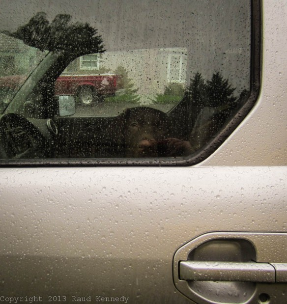 Raud Kennedy - rain