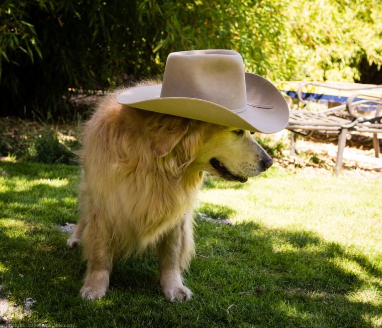 cowgirl Sadie
