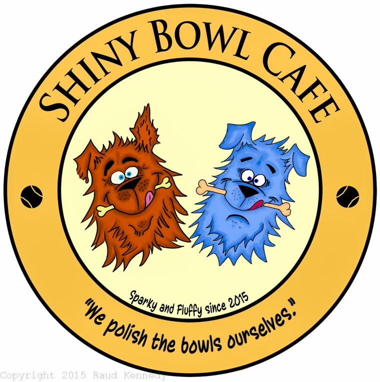 shiny bowl cafe copy-2
